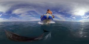 360-Grad-Videos mit VR-Brille ist die Zukunft.