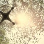 Ausschnit aus dem Konzept-Video von DJI.